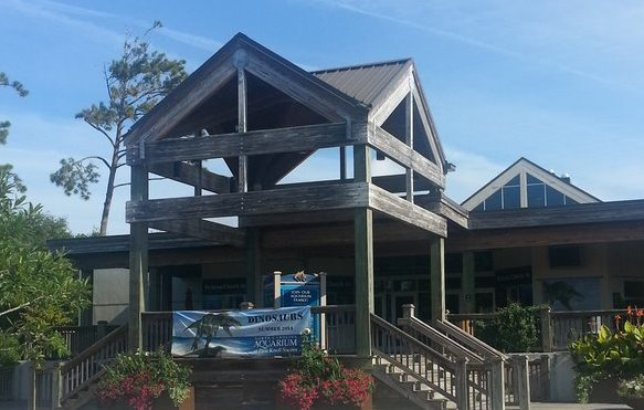 North Carolina Aquarium at Pine Knoll Shores | Things to Do