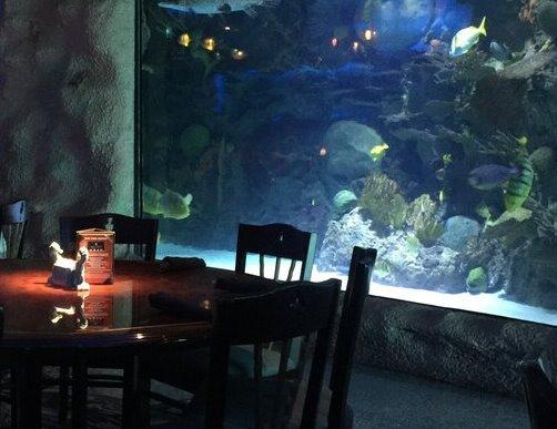 Downtown Aquarium Houston Texas Things To Do