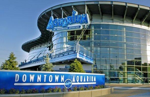 Downtown Aquarium Denver Co Things To Do
